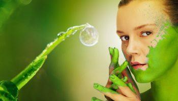 cosmétique bio 4