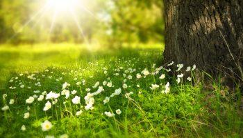 partir-a-laventure-pour-profiter-de-la-nature